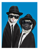 Brothers (Pets Rock) Prints by  Takkoda