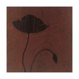 Poppy Prints by Robert Charon