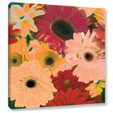 Gerbera Cluster Gallery Wrapped Canvas Gallery Wrapped Canvas