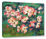 Pink Dogwood Gallery Wrapped Canvas Gallery Wrapped Canvas