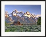 Robbie George - An Old Mormon Barn Sits at the Base of Grand Teton Zarámovaná reprodukce fotografie