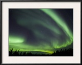 The Aurora Borealis Streaks the Sky Above Birch Creek Framed Photographic Print by Michael Melford