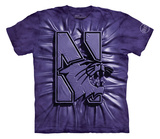 Youth: Northwestern University- Inner Spirit T-Shirt