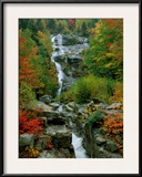 A Stream Runs Swiftly over Rocks Framed Photographic Print by Medford Taylor
