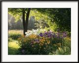 Summer Flower Adourn a Farm Garden Gerahmter Fotografie-Druck von Kenneth Ginn