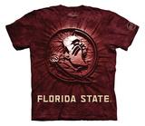 Youth: Florida State University- Inner Spirit Shirts