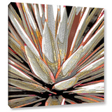 Desert Agave Gallery Wrapped Canvas Stretched Canvas Print