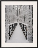 A View of a Snow-Covered Bridge in the Woods Framed Photographic Print by Richard Nowitz