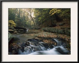 Small Waterfall on Hunting Creek in Fall, Catoctin Mountain Park, Maryland Framed Photographic Print by Gerry Ellis