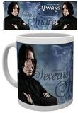 Harry Potter Snape Mug Mug