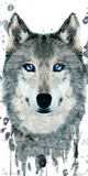 Wolf Thawing Posters