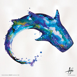 Marc Allante- Whale Prints by Marc Allante