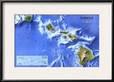 1995 Hawaii Map Prints