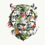 Robert Farkas- Tropical Tiger Prints by Robert Farkas