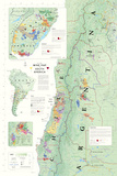 Wine Map Of South America Posters
