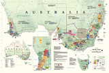Wine Map Of Australia Póster