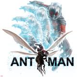 Captain America: Civil War - Ant-Man Plakater