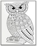 Wise Owl on a Log DIY Coloring Wall Plaque Wood Sign