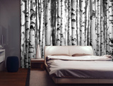 Silver Birch Forest Wall Mural Wallpaper Mural