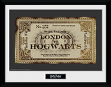 Harry Potter- Hogwarts Express Ticket Collector Print