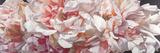 Raw Perfume Giclée-Druck von Sarah Caswell