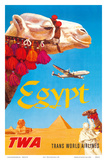 Egypt - TWA (Trans World Airlines) - Egyptian Camels, Pyramid, Sphinx Plakater af David Klein