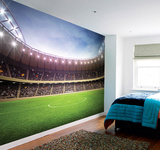 Football Stadium Wall Mural Carta da parati decorativa