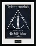 Harry Potter- The Deathly Hallows Wydruk kolekcjonerski