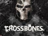 Captain America: Civil War - Cross Bones Metal Print