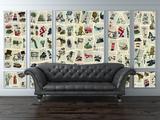 Creative Collage Marion McConaghie Pages Papier peint
