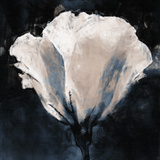Lisianthus Sketch Giclee Print by Malcolm Sanders
