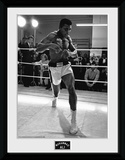 Muhammad Ali- Shadow Boxing Collector-tryk