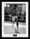 Muhammad Ali- Shadow Boxing Objeto de coleccionista enmarcado