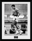 Muhammad Ali- Training Collector-tryk