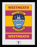 Gaa County- Westmeath Collector Print