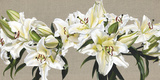Lily Garland Giclee Print by Sarah Caswell