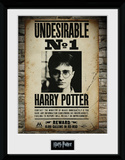 Harry Potter- Undesirable No 1 Collector Print