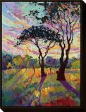 California Sky (bottom left) Framed Canvas Print by Erin Hanson