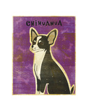 Chihuahua (black and white) Poster by John Golden