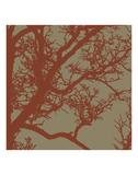 Cinnamon Tree IV Prints by Erin Clark