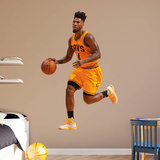 NBA Iman Shumpert 2015-2016 Gold RealBig Wall Decal