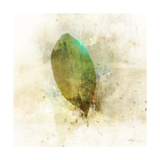 Falling Birch Leaf Print by Ken Roko
