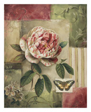 Rose and Butterfly Poster by Lisa Audit