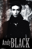 Andy Black- Stone Posters