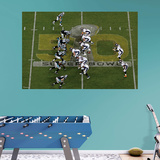 NFL Denver Broncos Super Bowl 50 Overhead RealBig Mural Wall Mural