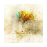 Falling Ginko Leaf Prints by Ken Roko