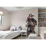 DC Batman v Superman Wonder Woman RealBig Wall Decal