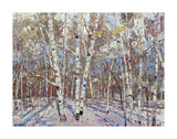 Winter's Light Print by Robert Moore