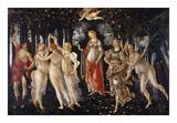La Primavera, 1481-1482 Poster by Sandro Botticelli