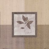 Leaf Spray l Prints by Marguerite Gonot